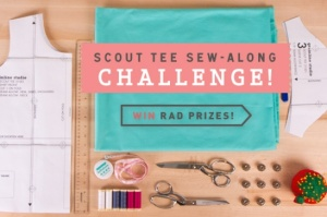 sewalong-scouttee-contest